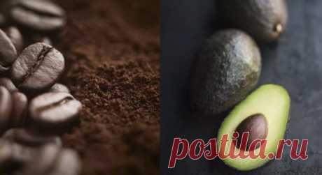 Никогда не выбрасывайте косточки авокадо: польза для здоровья и красоты