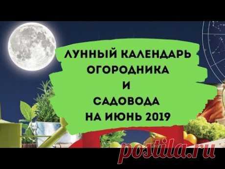 С цветами по жизни!: Лунный календарь огородника и садовода на июнь 2019