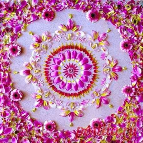 Чудесные картины из цветов: идеи для творчества