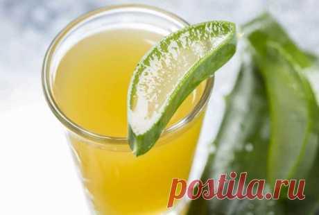 Алоэ с медом и вином. Рецепт. Пейте и не болейте! Вместо того, чтобы принимать пригоршни различных витаминов, сделайте себе вино из алоэ и мёда. Оно защитит вас от вирусов и бактерий.