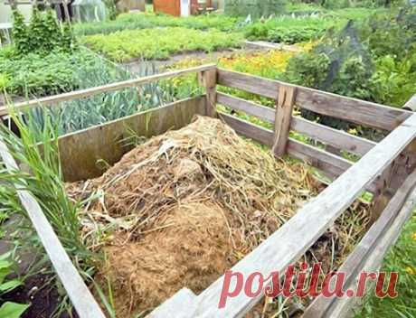 Компост с максимальной пользой - cоветы бывалых огородников