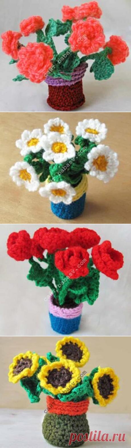Цветы в горшочке: 4 вида цветов с описаниями вязаний и видео