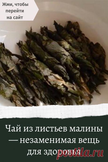 Чай из листьев малины — незаменимая вещь для здоровья