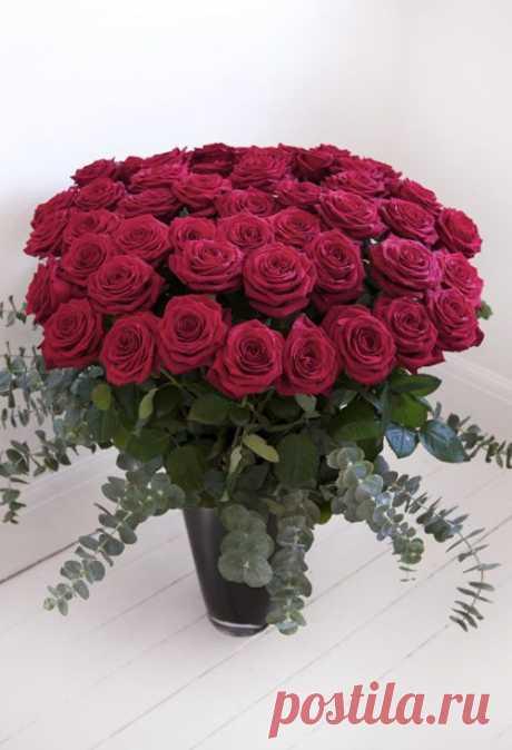 Найдено на сайте flowerona.com.