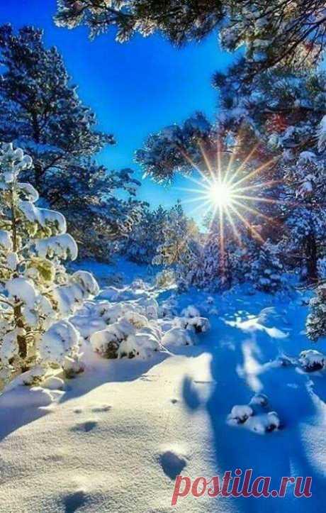 🎅❄️☃️․․․Բարի լույս!․․․☃️❄️🎅 Ձմօան հաճելի,ջերմ և երջանիկ օր՝ բոլորիս․․․!🌤❄️ Որքան գեղեցկություն կա...🤗Ձմերը իր ողջ հմայքով․․․ ❤️❄️ Թույլ տուր քեզ երազել և երազանքդ նկարի գեղեցիկ գույներով ...❤️✨❄️