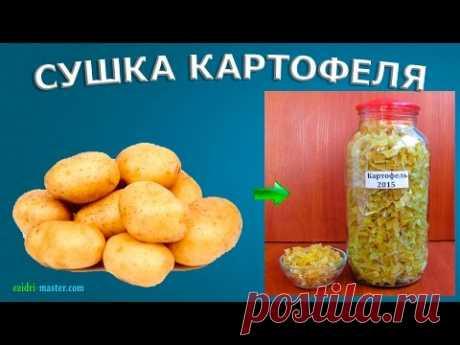 Сушеный картофель в поход