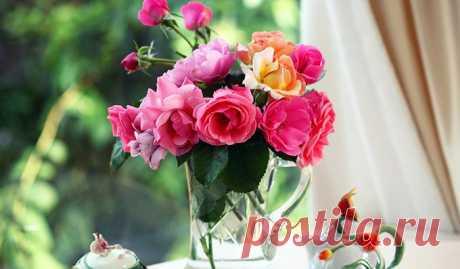 Давным-давно, когда у нас с будущим мужем ещё не было общих машин, дома и планов на отпуск, он принёс мне цветы. Такой простенький букет не первой свежести, на заправке в спешке купил. — А ты знаешь, — сказала я ему, расправляя помятые розы, — у нас, эзотериков, есть такое поверье, что чем дольше стоят подаренные цветы, тем крепче будут отношения. Бедный поклонник приезжал каждый вечер, обнюхивал и обыскивал тот букет, который стоял героические три недели. После этого он постоянно таскал мне…