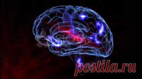 Что отрицательно влияет на мозг