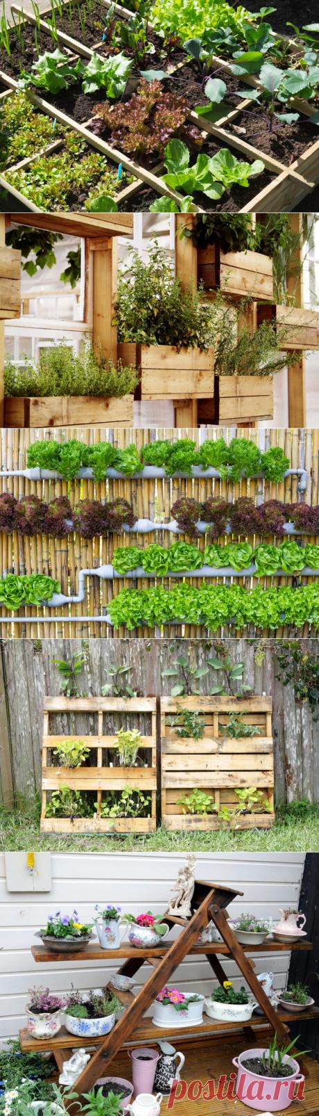 Идеи для контейнерных садов и огородов на небольшом участке / 7dach.ru