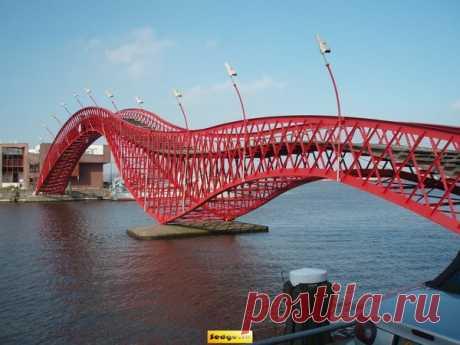Какой интересный мост.