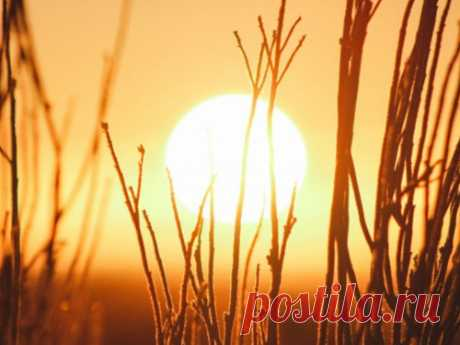 21 ИЮНЯ- летнее солнцестояние в2020 году Июньское солнцестояние— один изважнейших исамых мощных посвоей энергетике дней летнего периода. Именно поэтому необходимо знать заранее, когда точно произойдет данное событие.