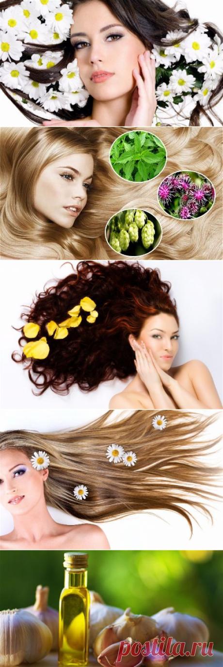 Весенние маски для волос. 10 отличных рецептов