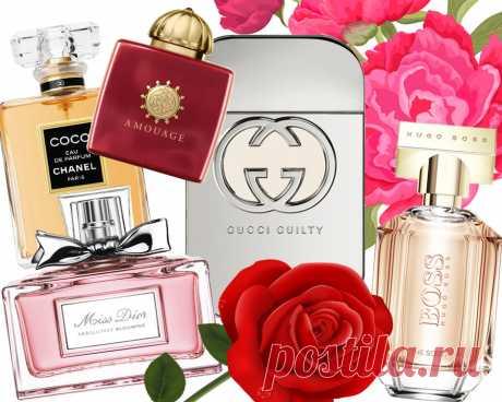 La etiqueta de perfumería: las reglas del uso de los aromas - la Belleza - la Dama Mail.Ru