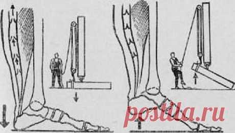 Виброгимнастика:постучите пятками о пол