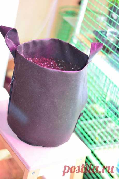 Самодельные емкости для растений