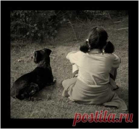 Мелодия сердца…   Блог одной Леди - Любовь, Страсть, Дружба, Жизнь
