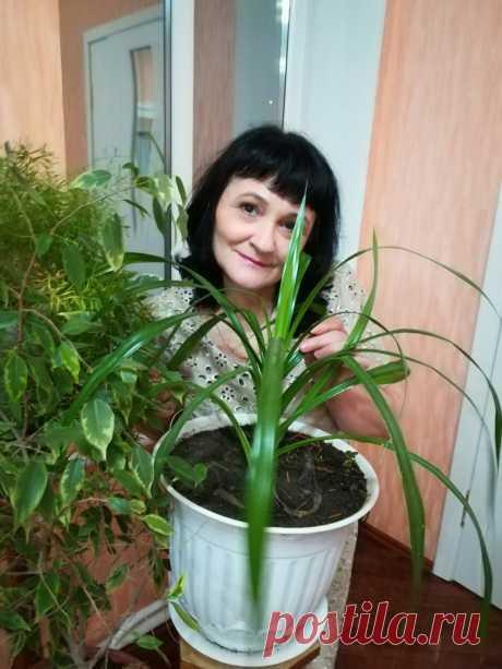 Инна Белоусова