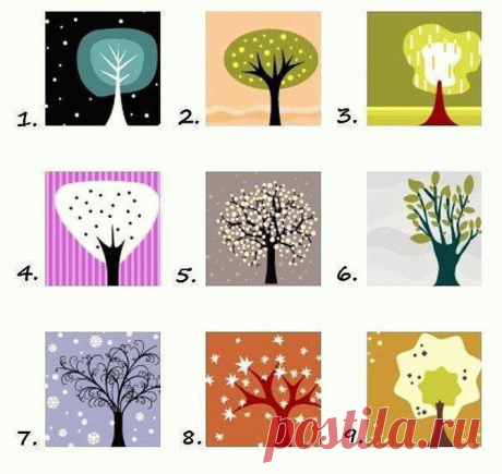 Choose a festive tree - and you will see yourself from outside! ~