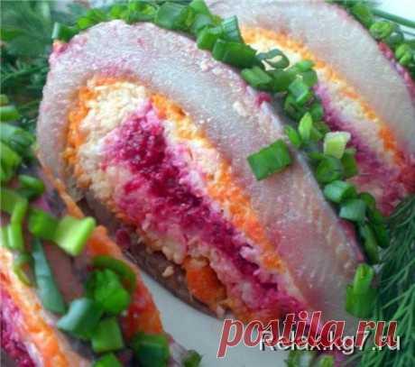 Snack Festive roll | Efariya