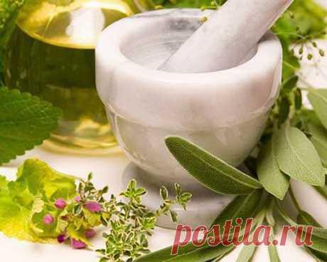 Лечение водянки народными средствами   Народная медицина