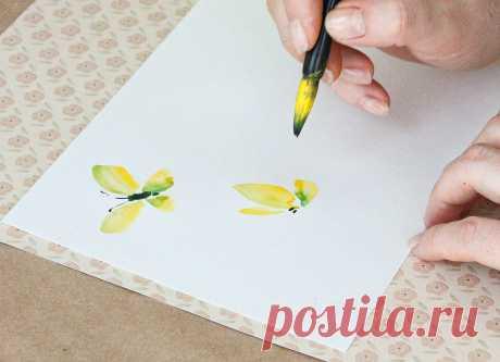 Как нарисовать бабочку красками: мастер-класс для начинающих. Как рисовать гуашью