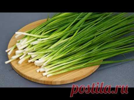 5 САМЫХ ПРОСТЫХ рецептов с ЗЕЛЁНЫМ ЛУКОМ! Потрясающе вкусно! Зелёный лук НА ЗИМУ