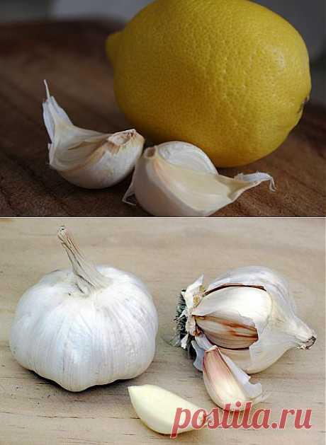 Чистка сосудов чесноком и лимоном: рецепт здоровья