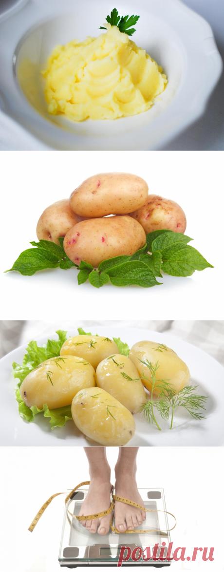 Картофельная диета для похудения, отзывы и результаты диеты на картофеле