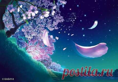 Зацвела сакура пышными цветами, в дальней мне, японской стороне. В розовом наряде, кружится с мечтами, отражаясь, в неба синеве.  Запахом морочит, дни бегут и ночи... И наряд за ветром улетит. Только будут птицы, на ветвях резвится... Вишня свою тайну, сохранит.