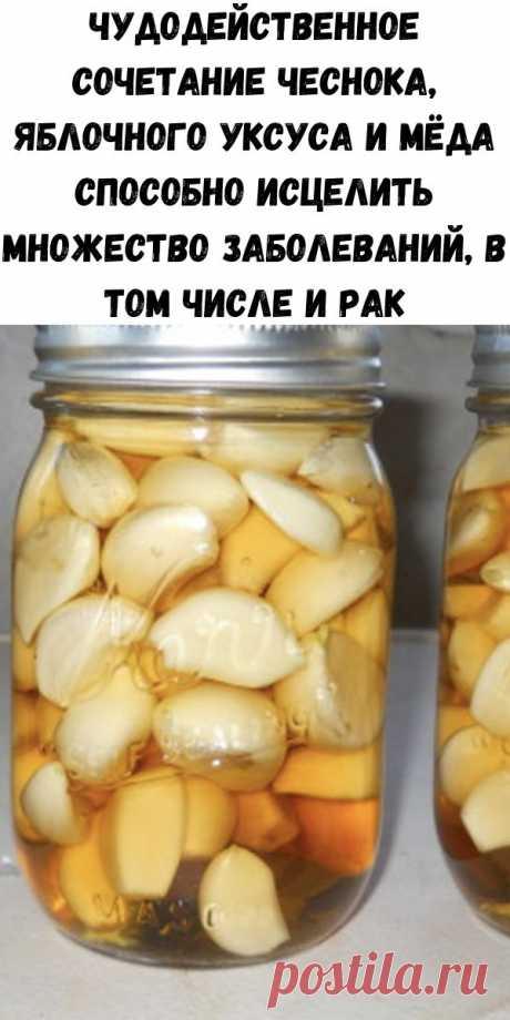 Чудодейственное сочетание чеснока, яблочного уксуса и мёда способно исцелить множество заболеваний, в том числе и рак - Счастливые заметки