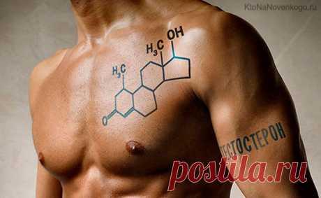 Тестостерон — что это такое, его норма у мужчин и женщин, как повысить уровень тестостерона | KtoNaNovenkogo.ru