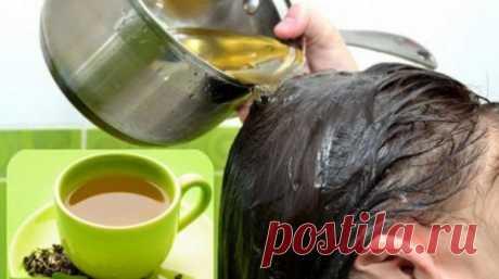 Отвар из листьев ореха для натурального окрашивания седых волос - Полезные Советы
