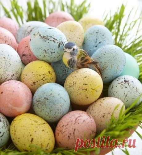 Крашеные яйца на Пасху - 25 способов! на Повар.ру