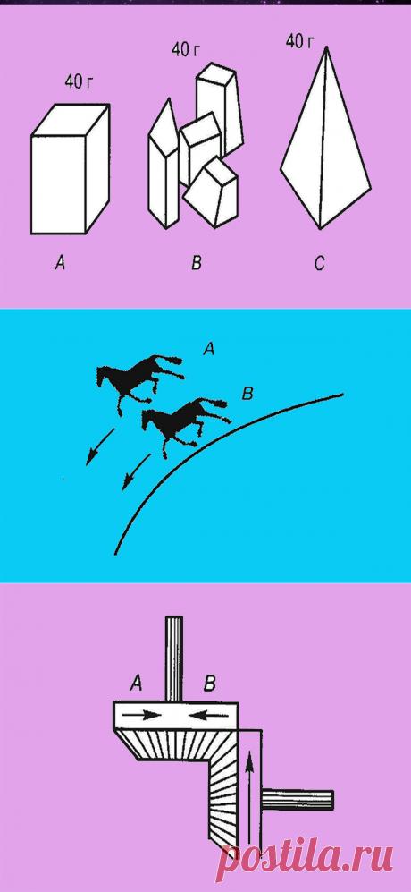 Какая из лошадок должна бежать быстрее? Тест беннета | Головоломыч | Яндекс Дзен