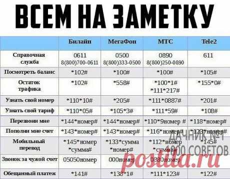 ДаЧнИк №1 - 1000 Советов