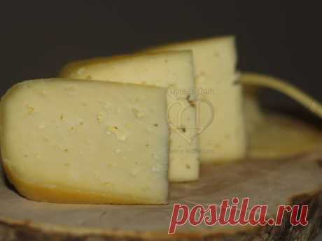 Рецепт Российского сыра | Рецепты сыра | Сырный Дом: все для домашнего сыроделия
