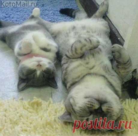 Sweet dreams:)