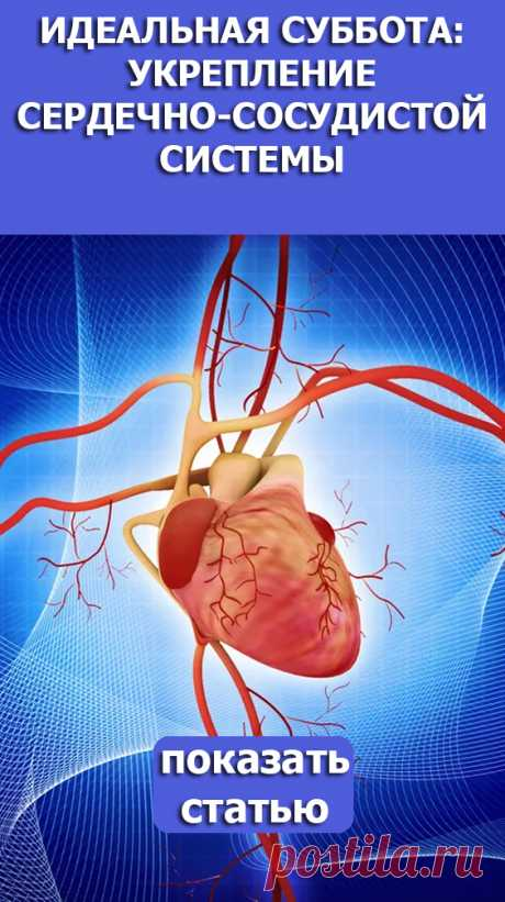 СМОТРИТЕ: Идеальная суббота: укрепление сердечно-сосудистой системы