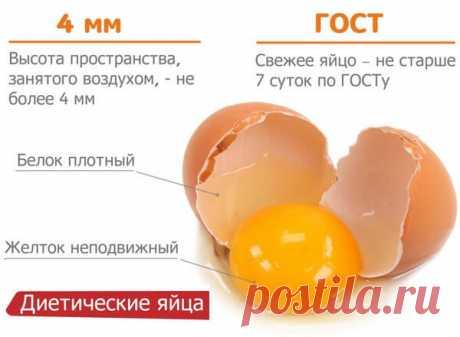 Как проверить яйца на свежесть – способы и видео, тухлое или нет? Мы сегодня расскажем про способы, как проверить яйца на свежесть – тухлое яйцо или нет? Яйца являются источником белка, витамина А и рибофлавина, диетологи