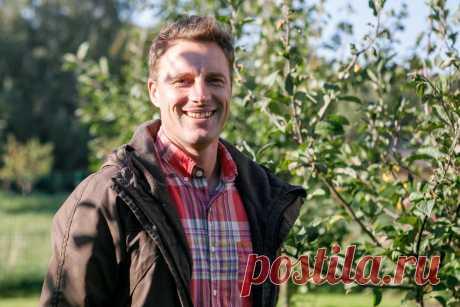 Pataria agronomas: ¿kada ir kuo purk š ti vaiskrūmius ir vaismedžius? | Gyvenimas | 15min.lt