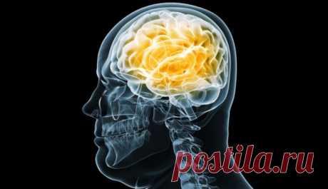 Улучшить кровообращение головного мозга поможет старинный народный рецепт из 3 компонентов!