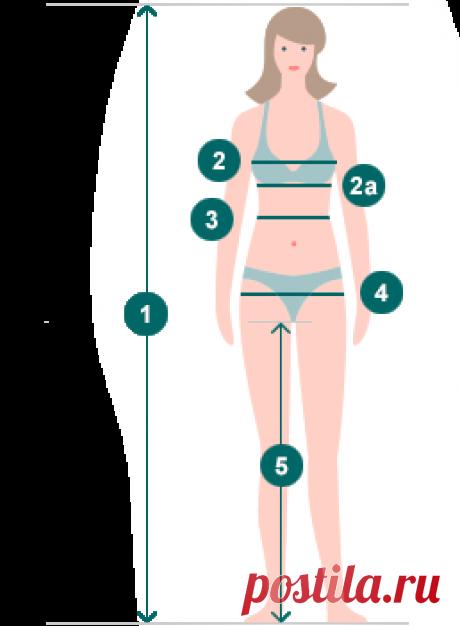 Таблицы размеров женской одежды - bonprix.ru
