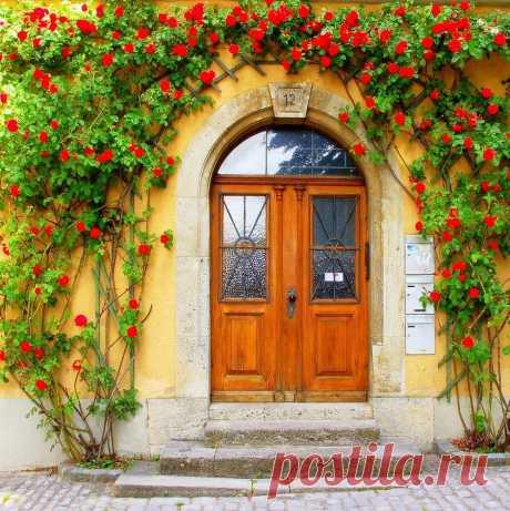 Цветы у входных дверей | Удивительное и смешное в картинках