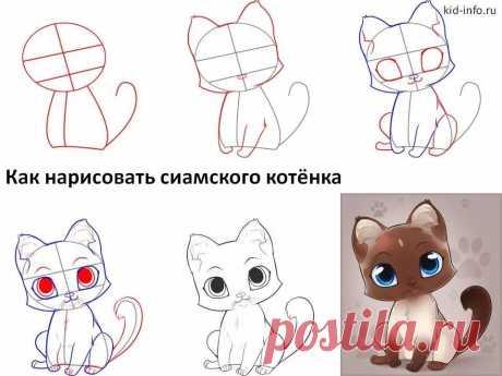 «Смотреть как рисуют котёнка» — карточка пользователя slavashishaev в Яндекс.Коллекциях