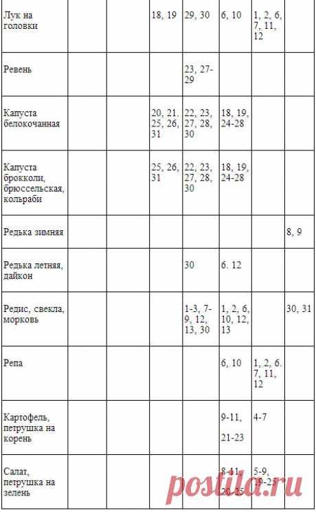 Лунный посевной календарь 2018. Сибирь. Садоводам и огородникам на заметку | Дача