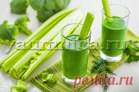 Целебный сок из сельдерея: применение, польза и вред, отзывы