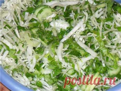 Cалат просто и вкусно Ингредиенты: - Пекинская капуста - Белокочанная капуста - Огурцы - Зелень (укроп, петрушка, сельдерей) - Оливковое масло