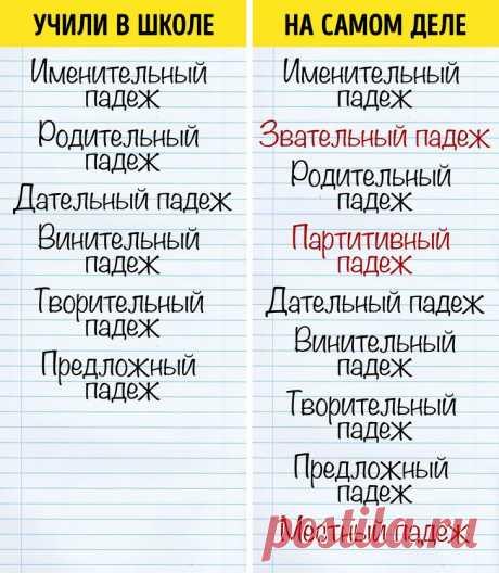 10 фактов о русском языке, которым не учат в школе / Научный хит