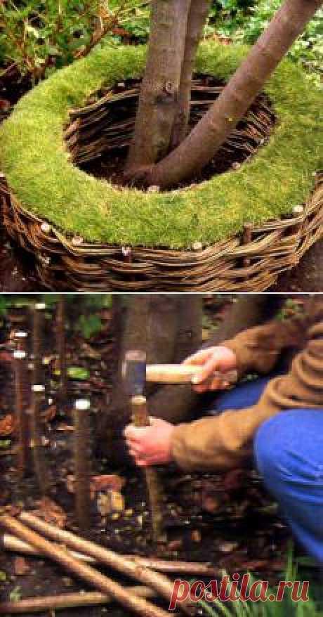 Украсьте дерево вот таким декоративным плетеным заборчиком-колечком.