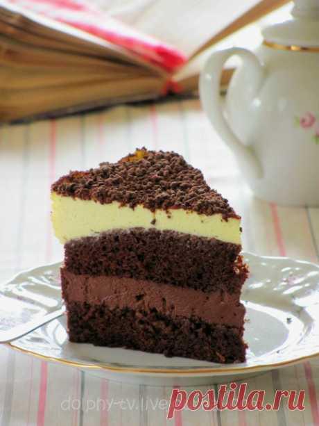 Шоколадно-апельсиновый торт - dolphy — LiveJournal